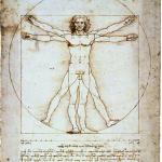 Léonard : l\'homme de Vitruve